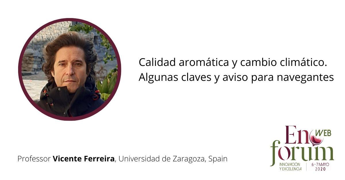 Vicente Ferreira (Espana), invited speaker